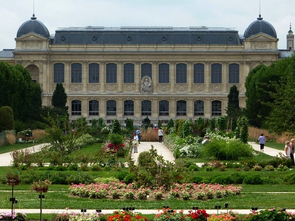 Celebrate biodiversity at the jardin des plantes paris for Jardines des plantes