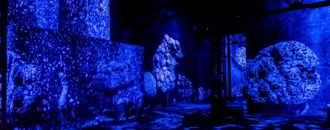 Immerse In Infinite Blue With Yves Klein