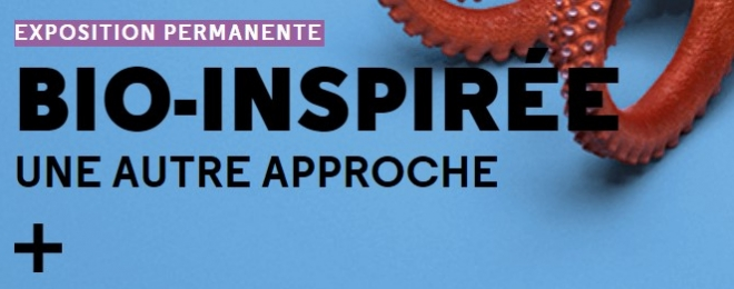 Let's Take Collective Responsibility at Bio Inspirée