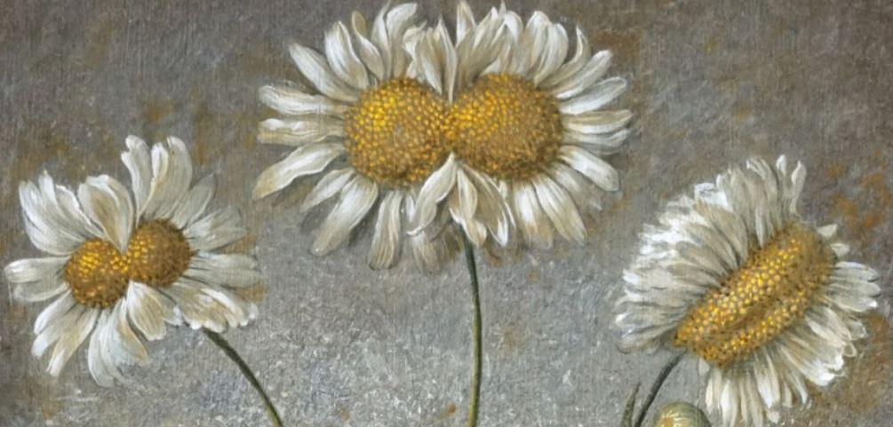 laurent grasso at musée d'orsay